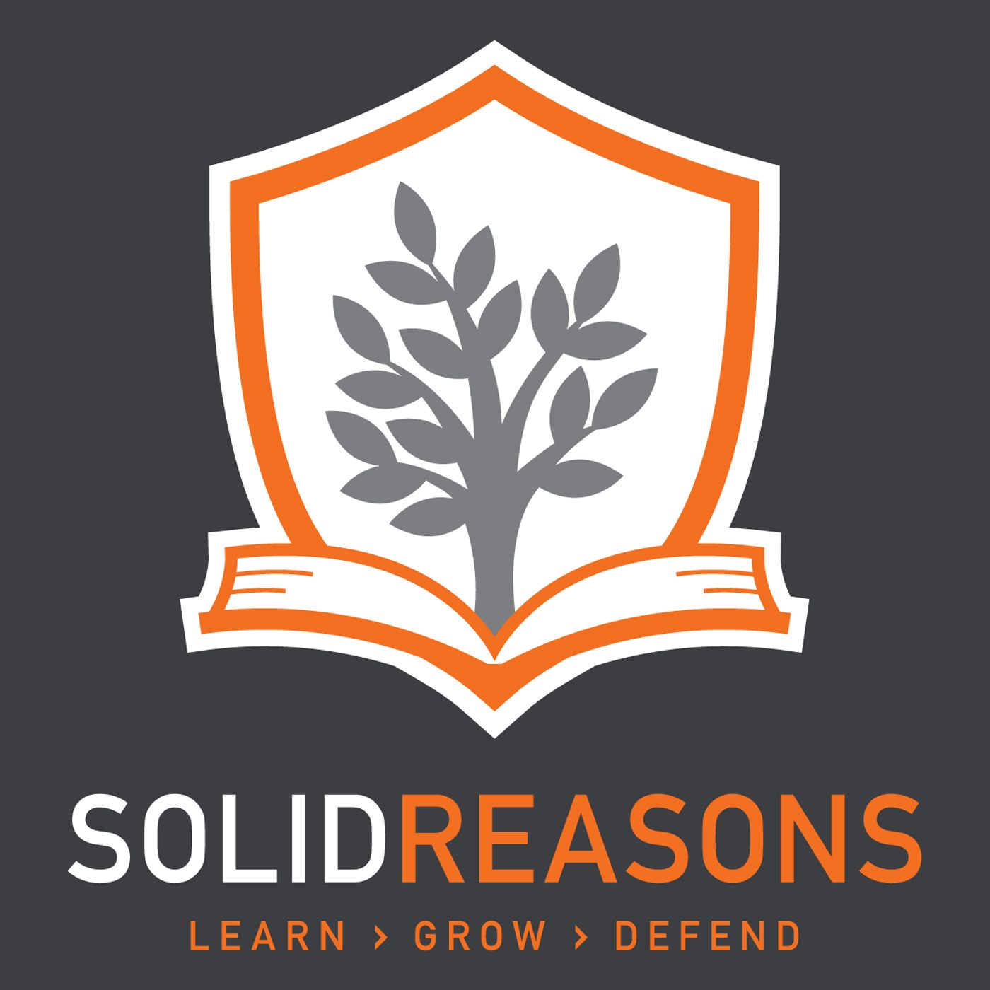 The Solid Reasons Morning Show
