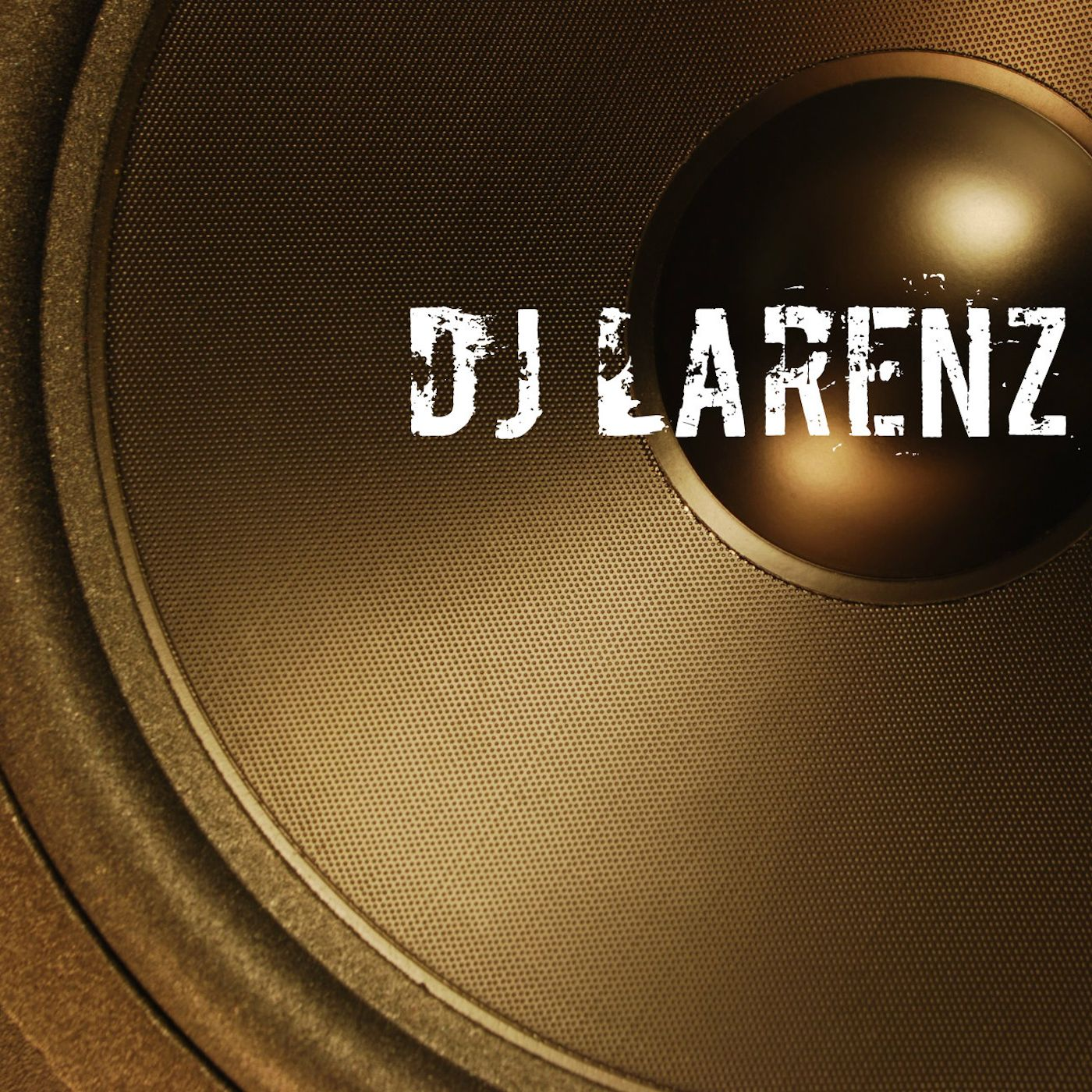 DJ Larenz - The Skool of Hip-Hop