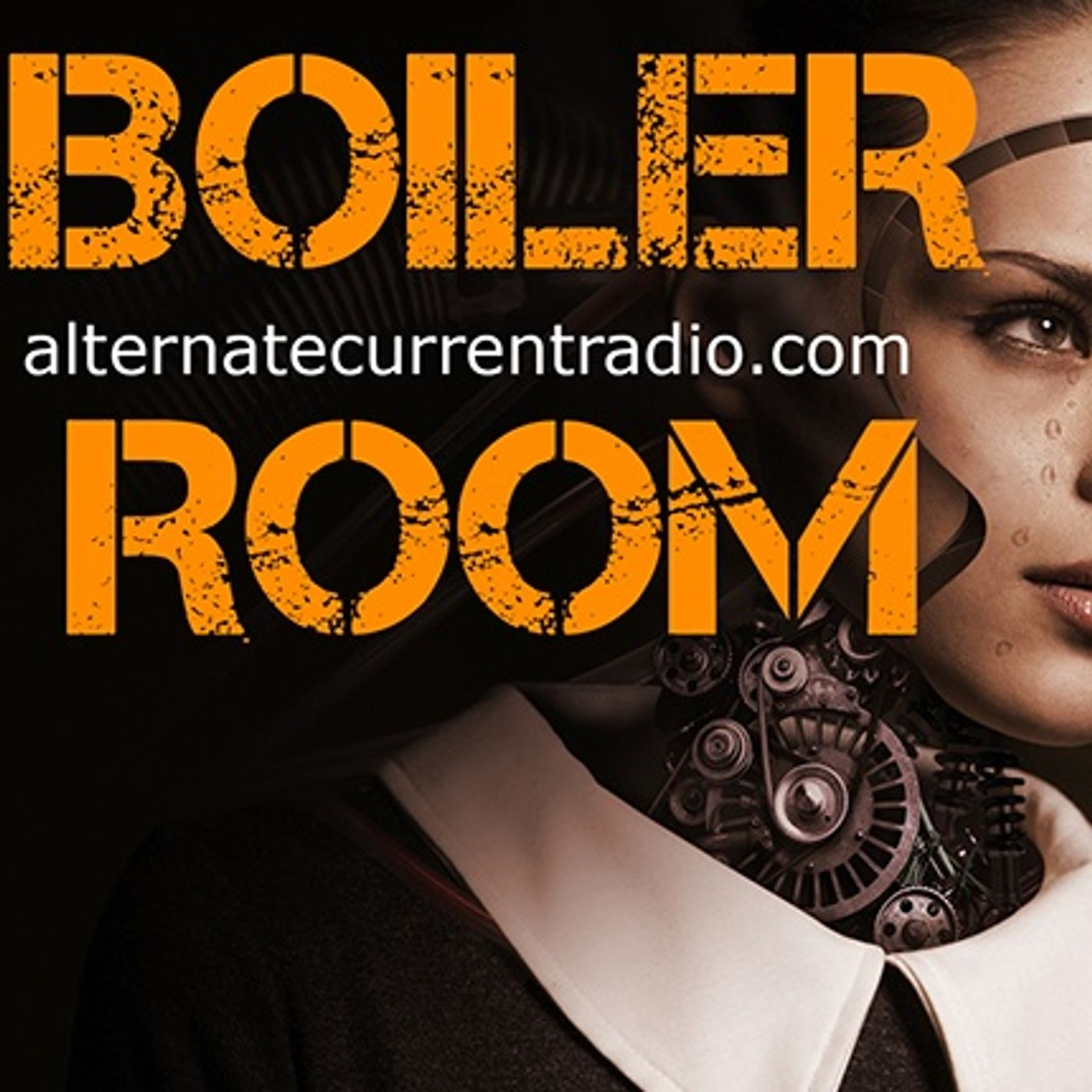 Just Say NO, to Technocratic Dictatorship - Epstien Bail Denied - Boiler Room #236
