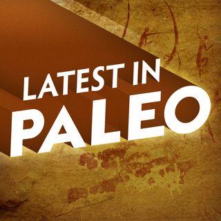 Latest in Paleo
