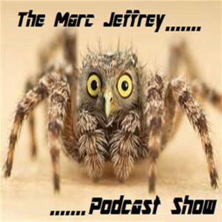 Episode 26  -  Mayweather v McGregor fight review
