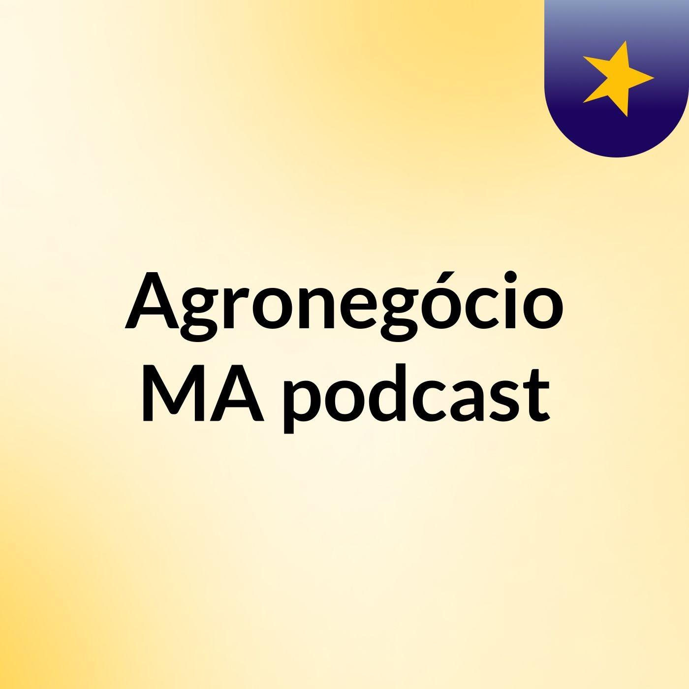 Episódio 5 - Maranhão dobra a produção nos últimos anos