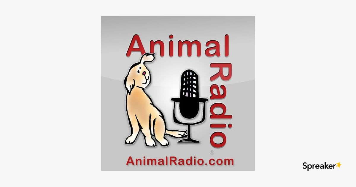 1006. Are Pet Sitting Apps Safe