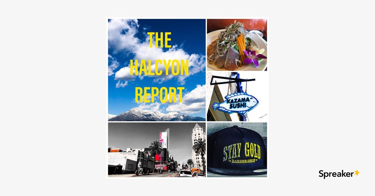 THE HALCYON REPORT EPISODE 16