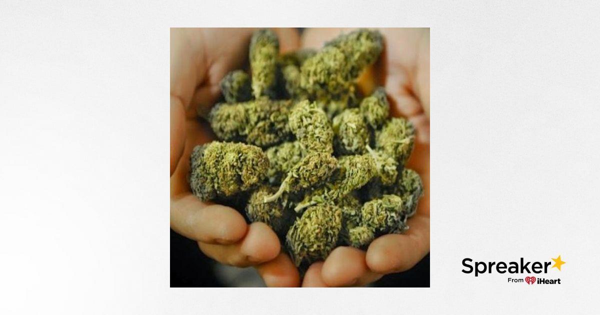 Investor Ideas Potcasts, #Cannabis News and Stocks on the Move (TSXV: ZENA), (TSX: TGOD) (OTC:TGODF), (TSX: FIRE) (OTCQX: SPRWF), (NYSE: ACB