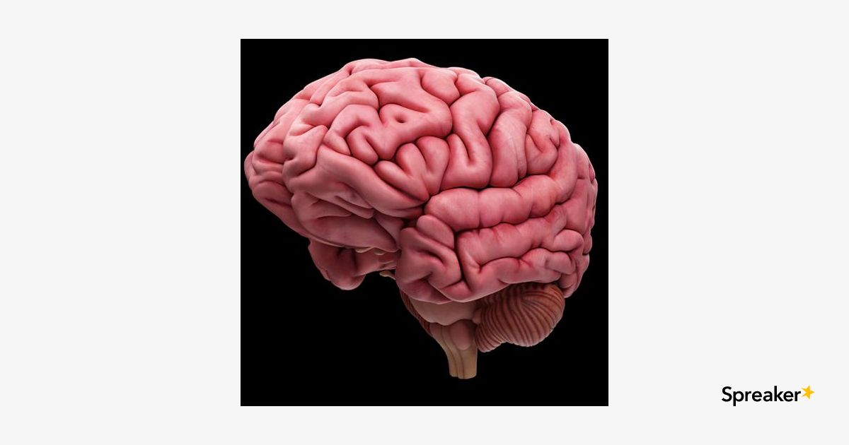 a tour of the brain Brain tour click the hotspots to discover how your brain works and the effect dementia has on it join us on a tour of the brain, the most complex structure in the known universe.
