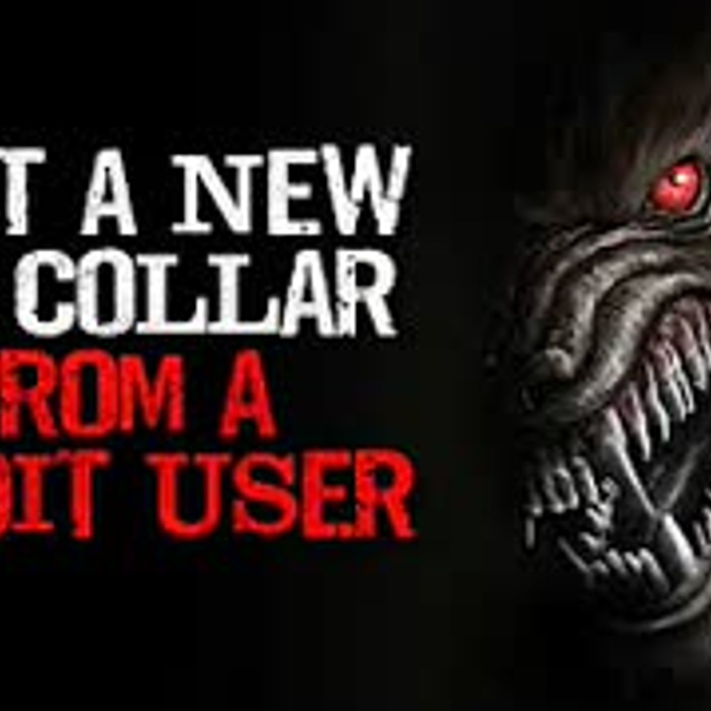 """I got a new dog collar from a reddit user"" Creepypasta"