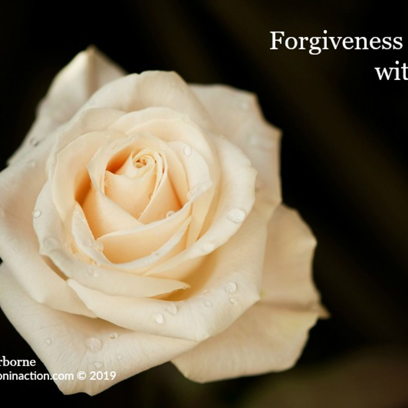 The Power Found In The Art of Forgiveness