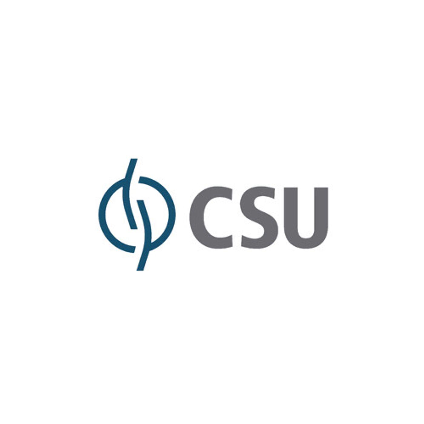 Teleconferência de Resultados da CSU Cardsystem (CARD3) do 1T20