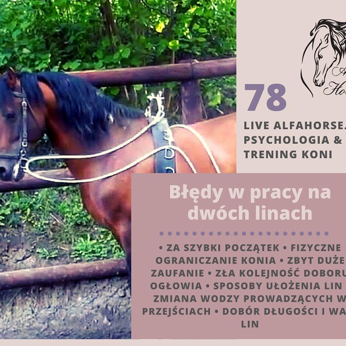 Live 78: Błędy w treningu koni na dwóch linach