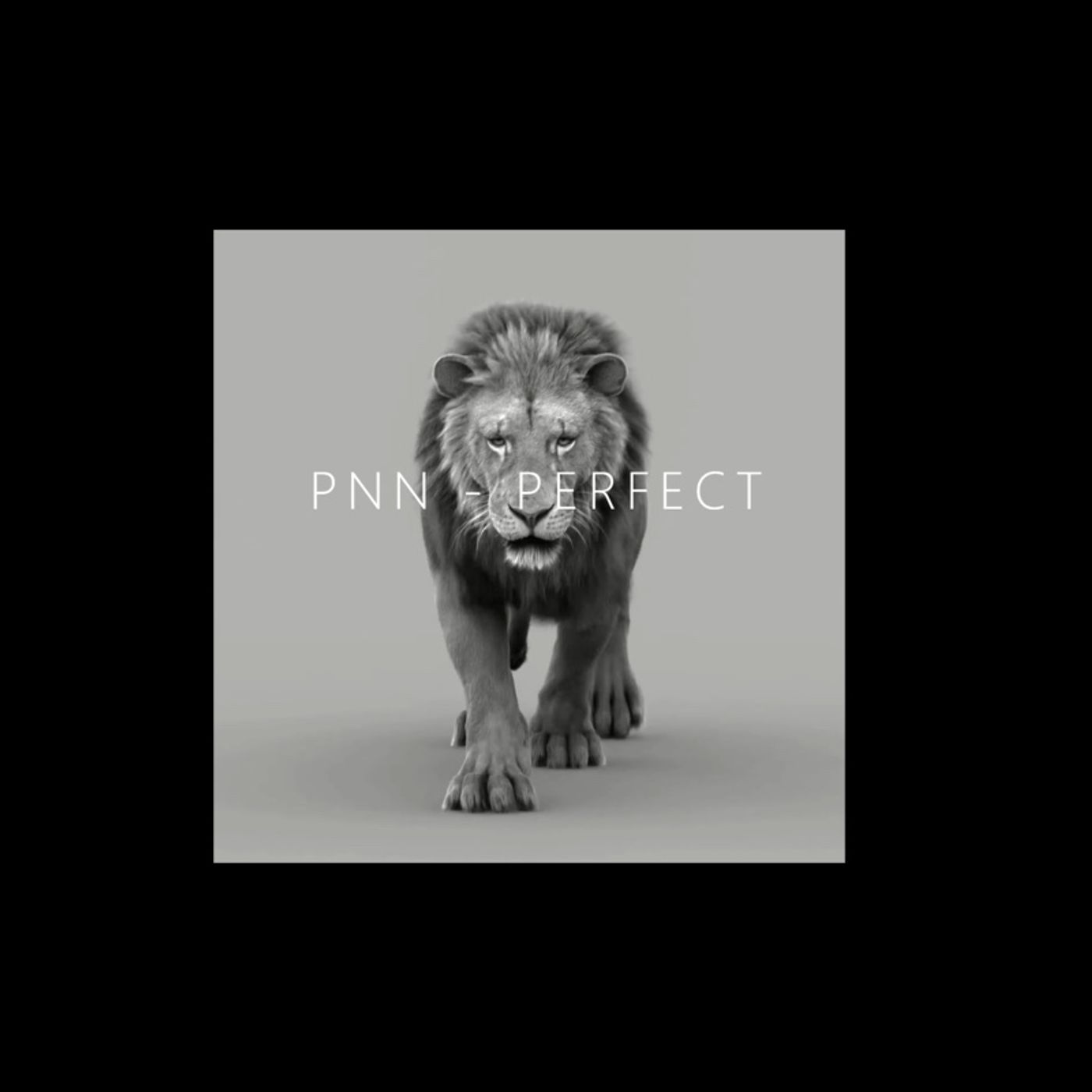 PNN - Perfect (Produced By Kato On The Track)