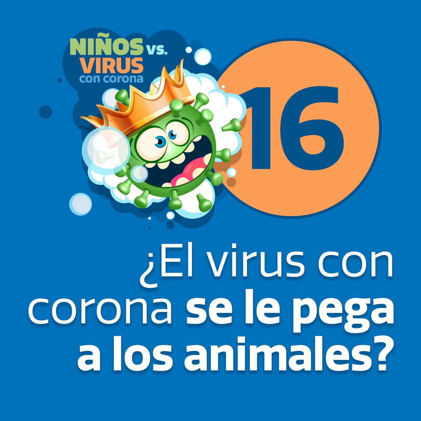 Día 16: La vida secreta de las mascotas   ¿El virus con corona se le pega a los animales?