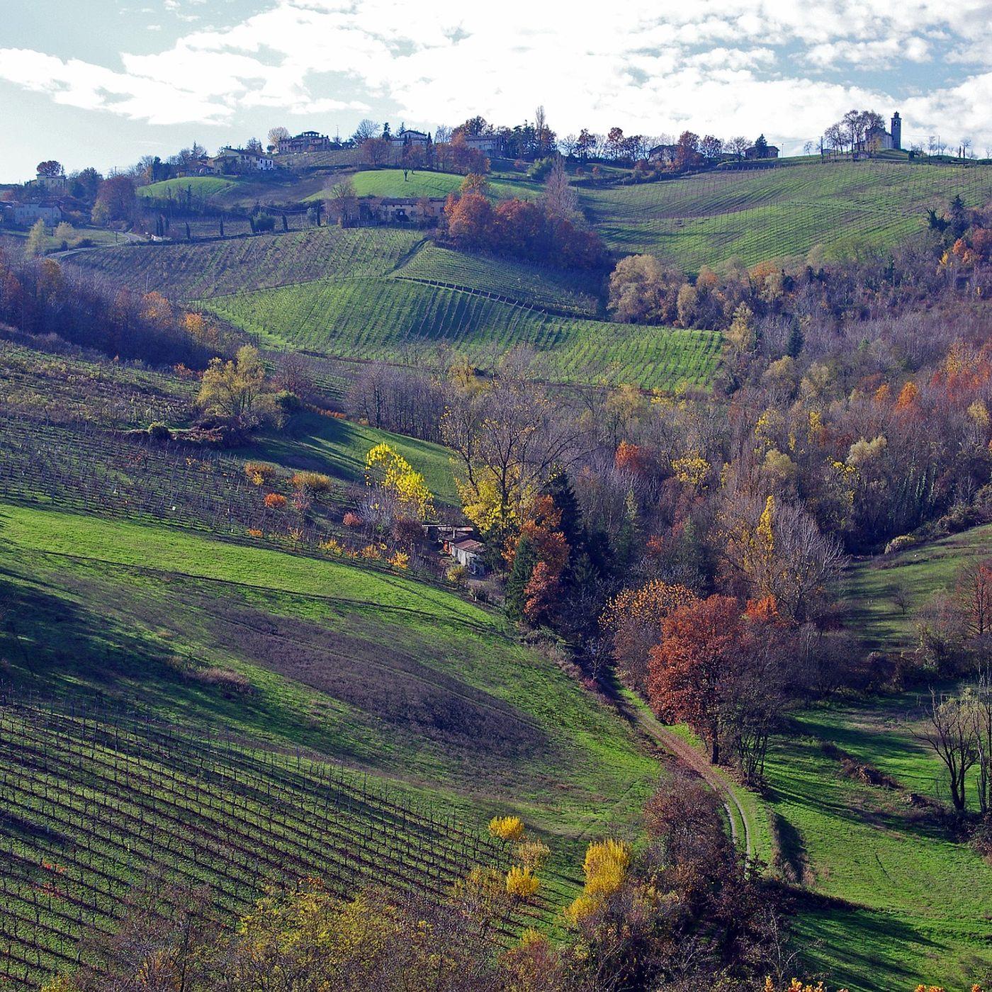 234. CULTURA: Emilia Romagna