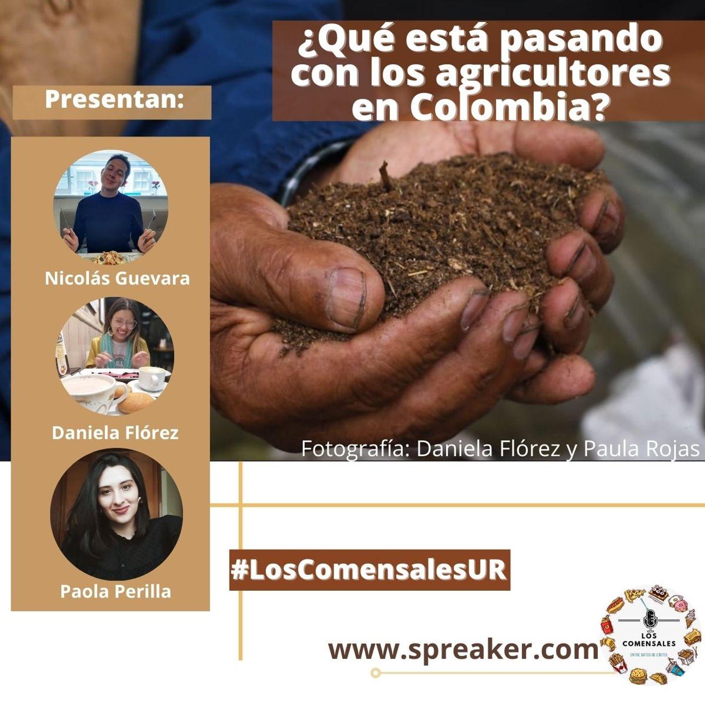 ¿Qué está pasando con los agricultores de Colombia?