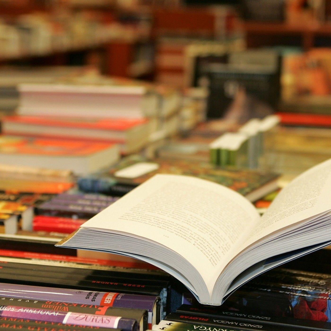 """Literatūros akiračiai. """"Literatūros akiračiai"""": begalinė šiuolaikinės japonų literatūros lygtis."""