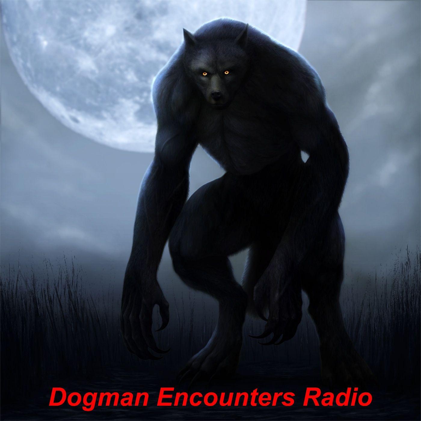 Dogman Encounters Episode 376 (The Dogman Grabbed him in His Sleeping Bag!)
