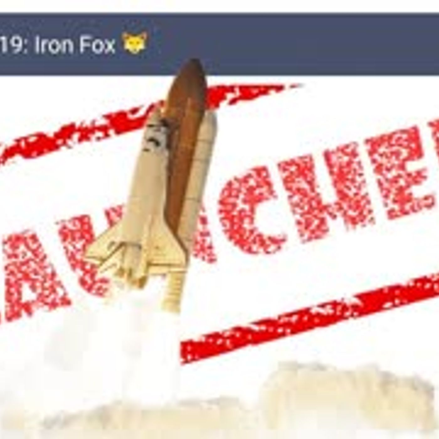 IRON FOX DEPLOYED!   2019 is Closing... Who Will be the Big Winners of 2019 - PRIVACY will WIN!