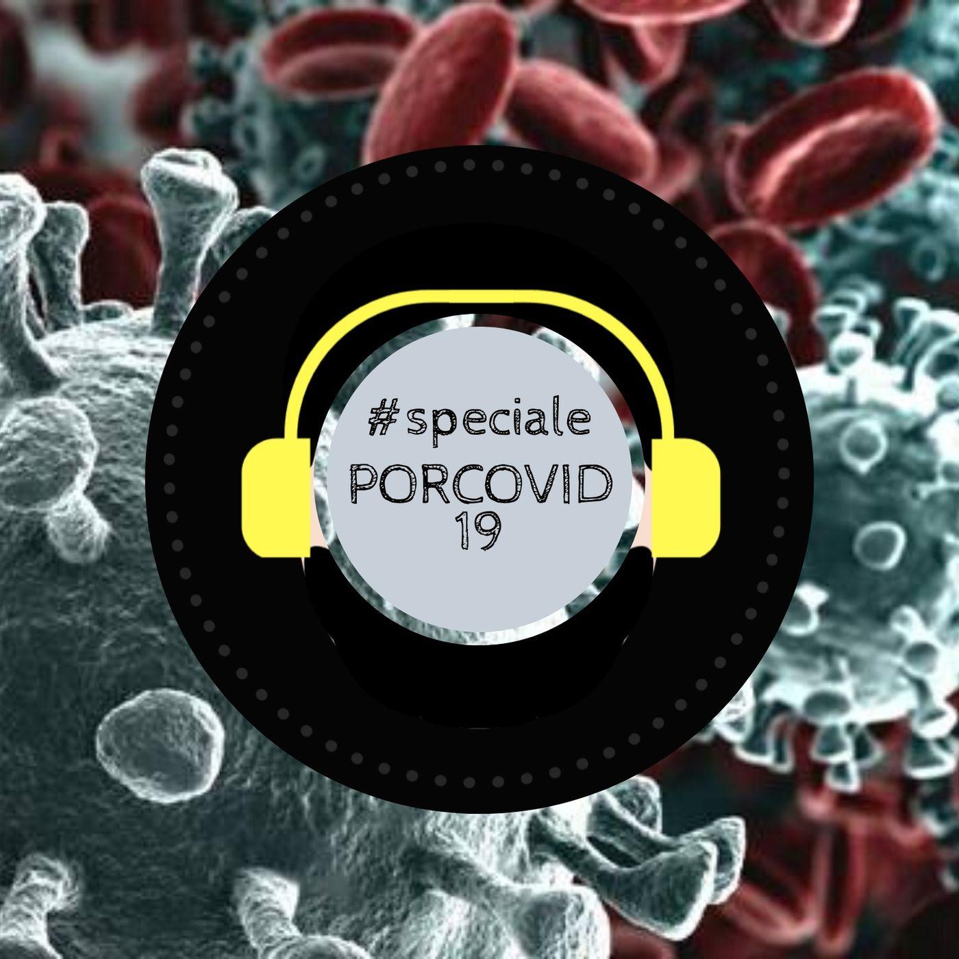 #Speciale - Porcovid-19