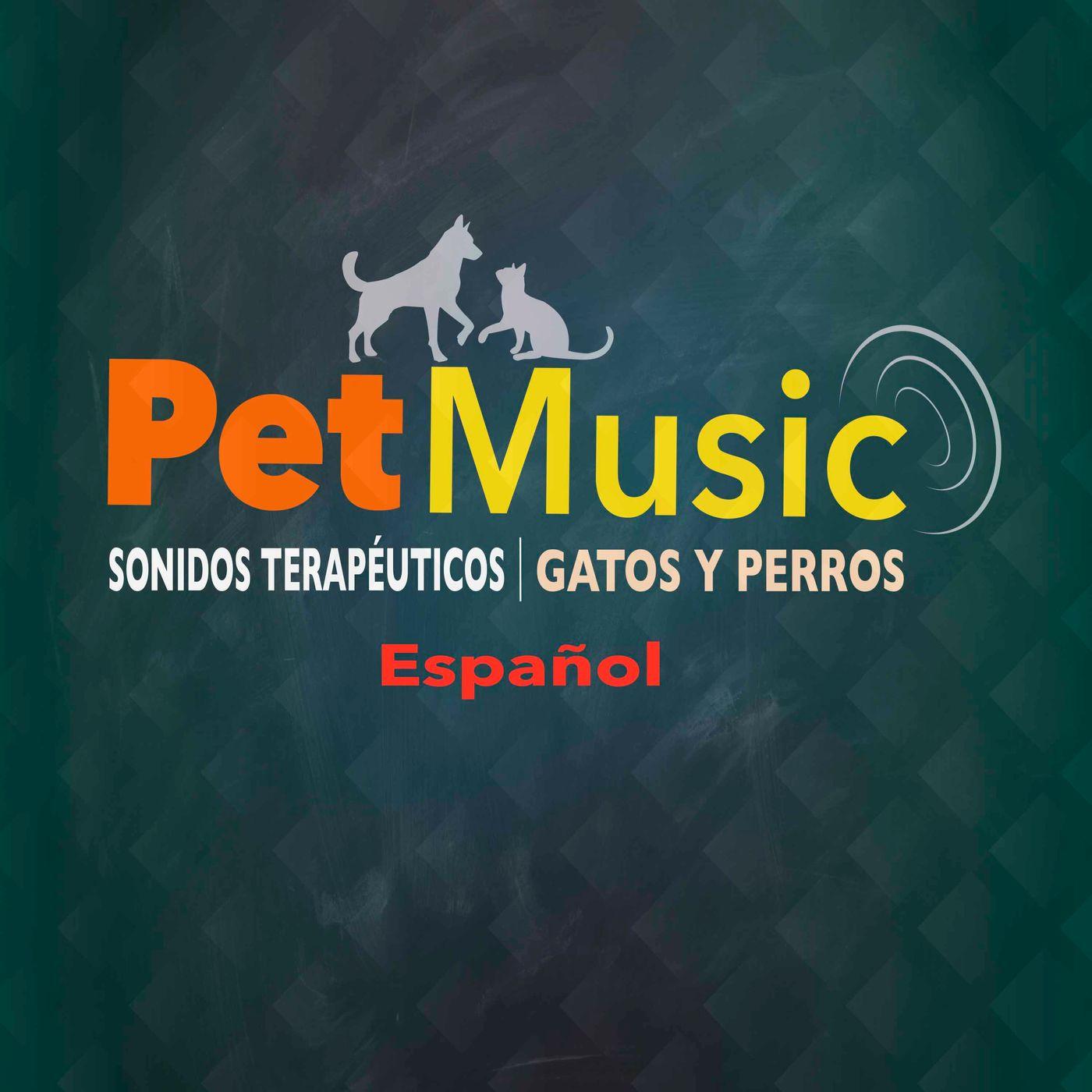 #01 Sonidos Terapéuticos para Tranquilizar a los Perros   PetMusic