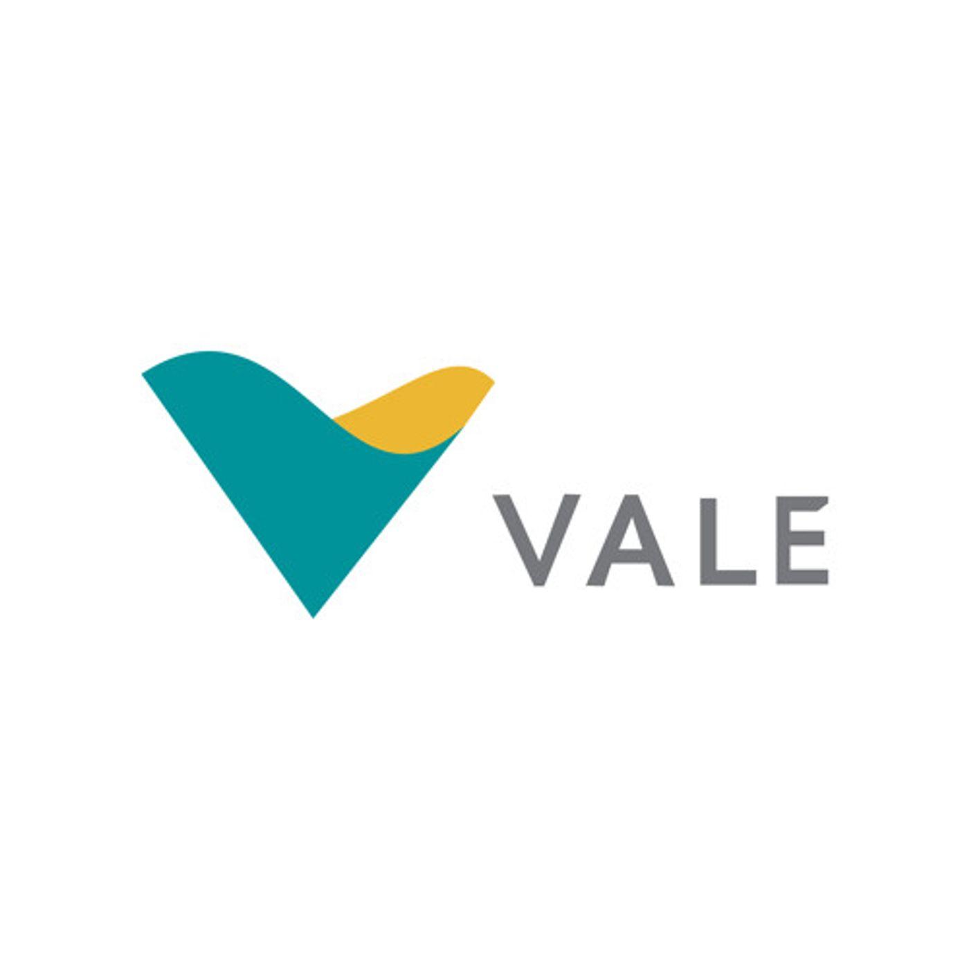 Teleconferência de Resultados da Vale (VALE3) do 1t20