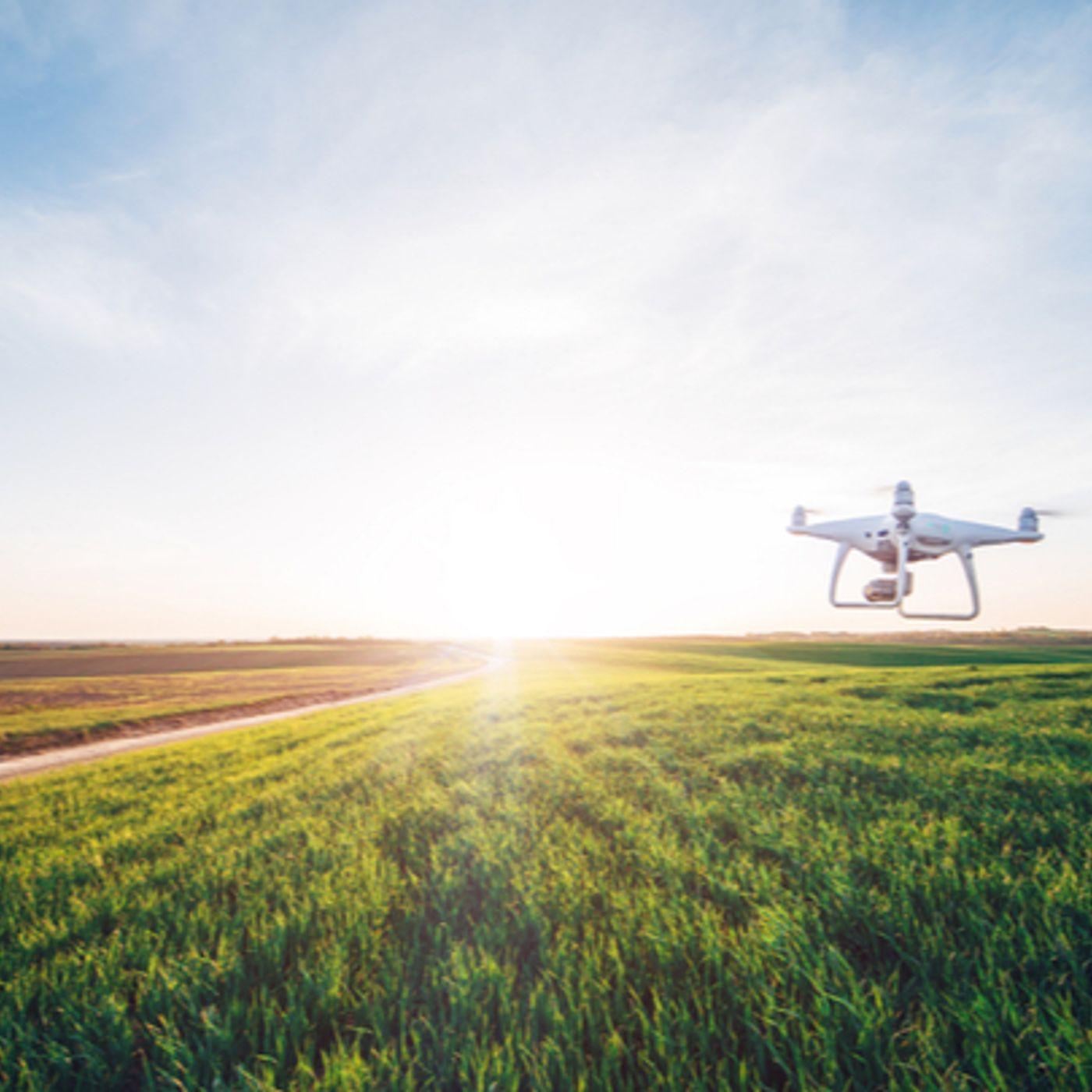 Agriculture: comment la 5G, l'IA et la data pourraient faire émerger de nouveaux modèles économiques