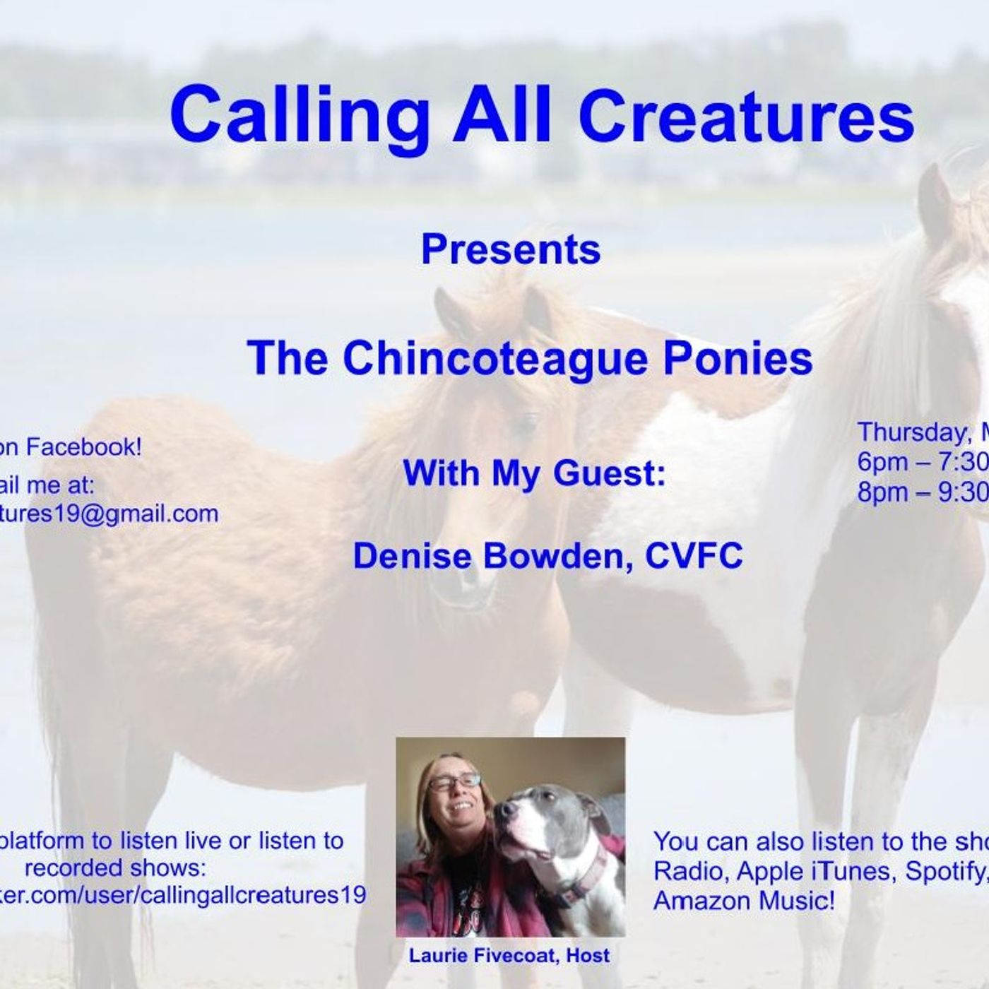 Calling All Creatures Presents The Chincoteague Ponies