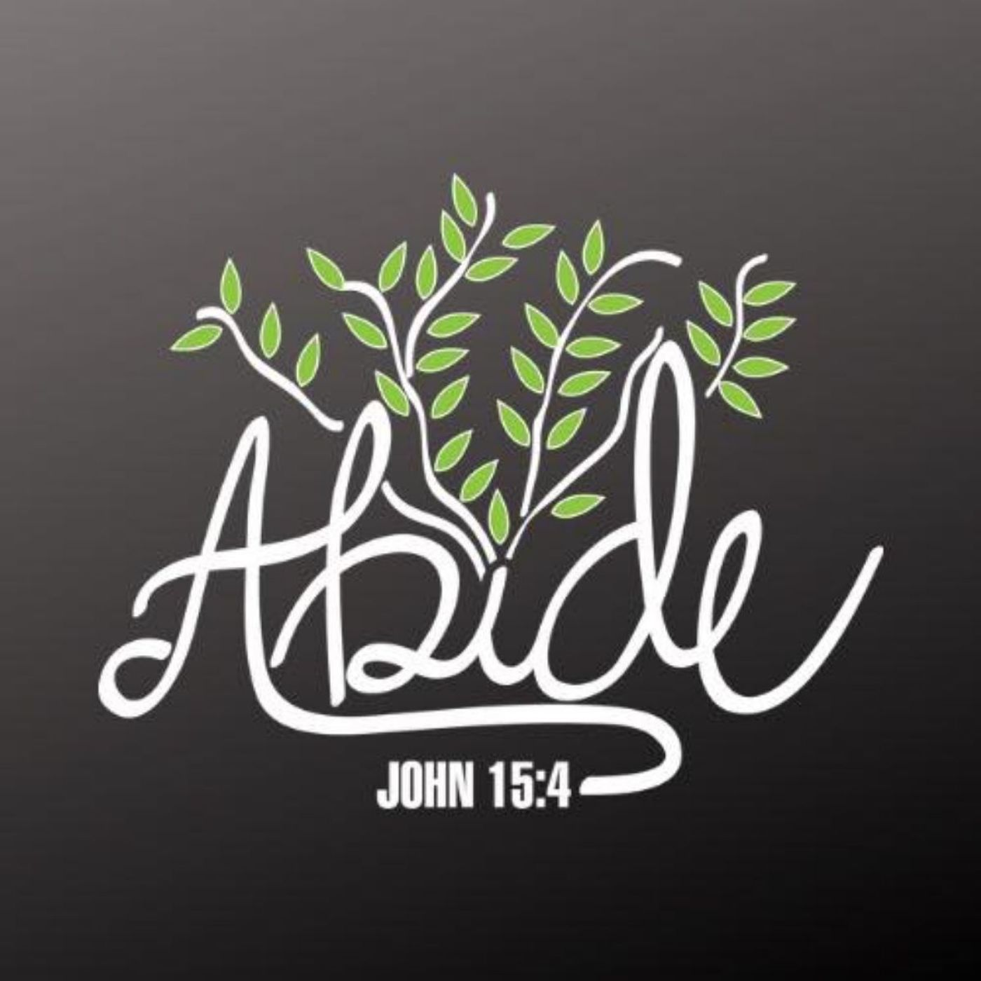 What Does it Mean to Abide in Christ?