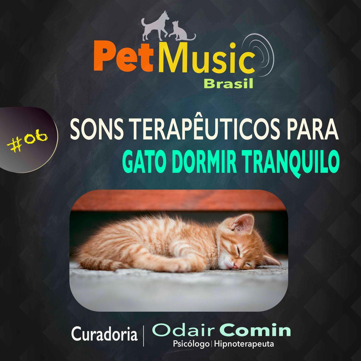 #06 Sons Terapêuticos para Gatos Dormirem Tranquilos