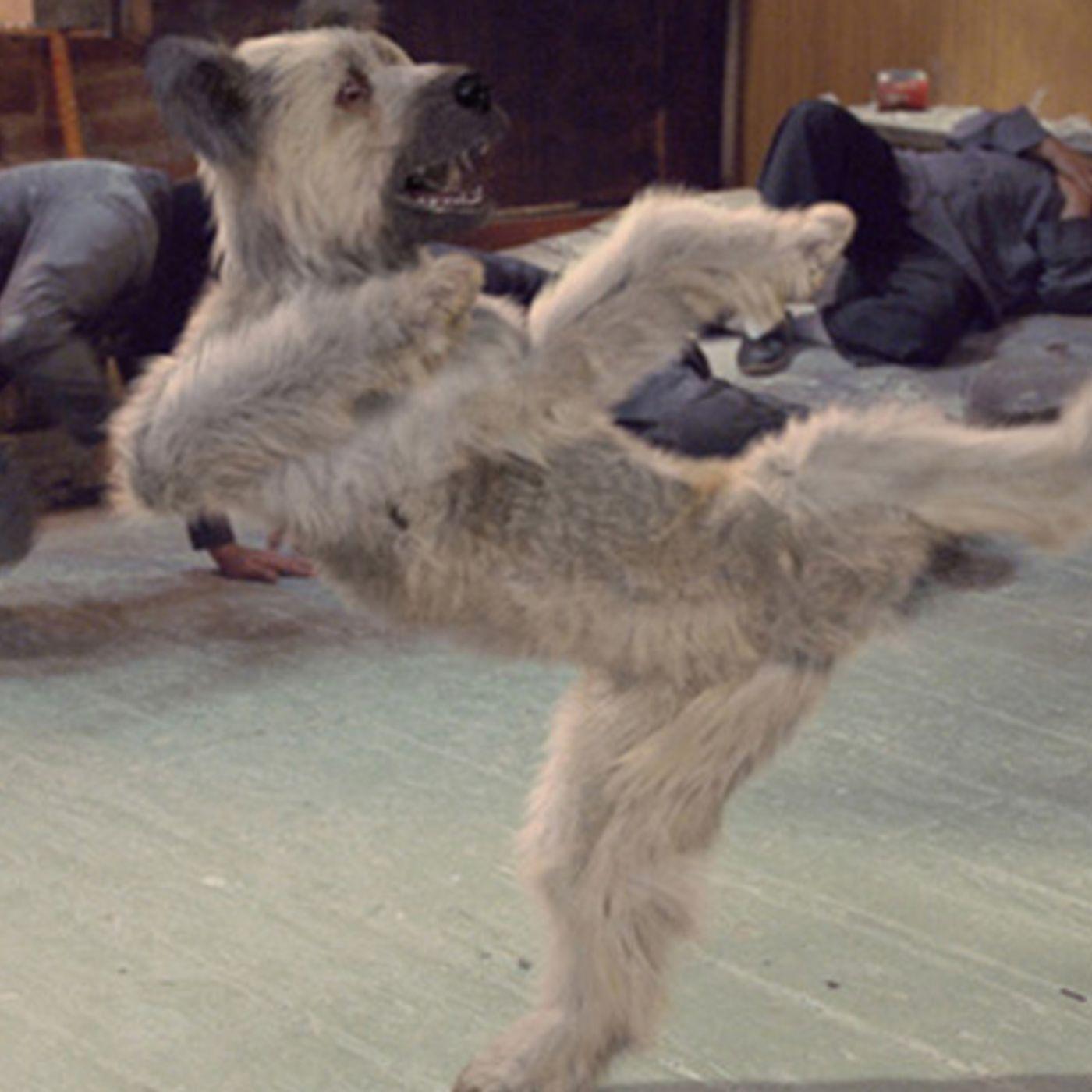 Episode 25: Karate Dog Christmas Spectacular!