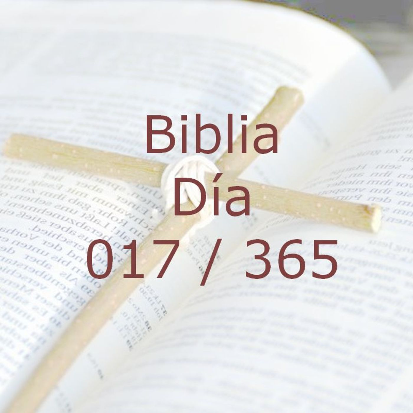 365 dias para la Biblia - Dia 017