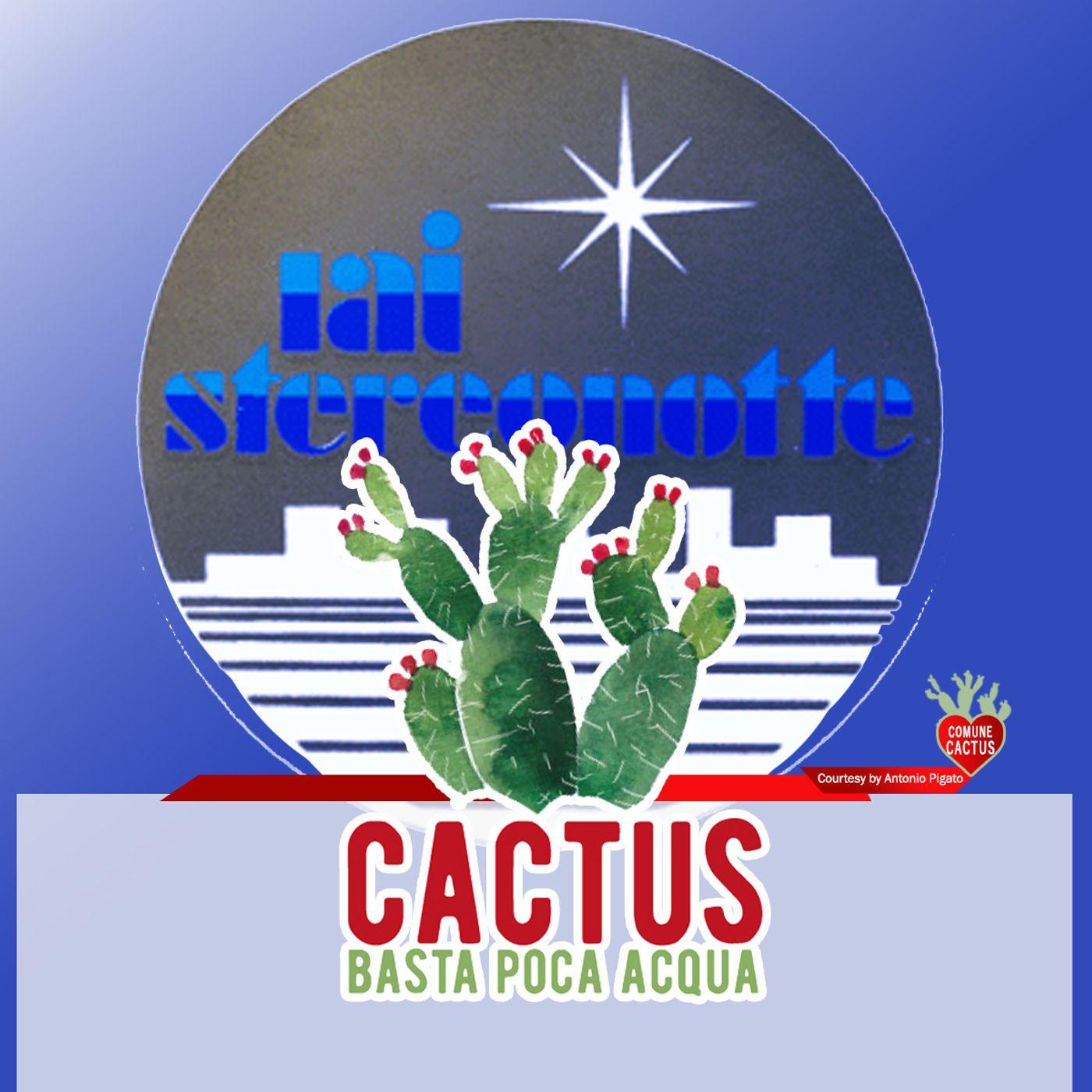 Cactus #24 - Nella notte - 11/03/2021