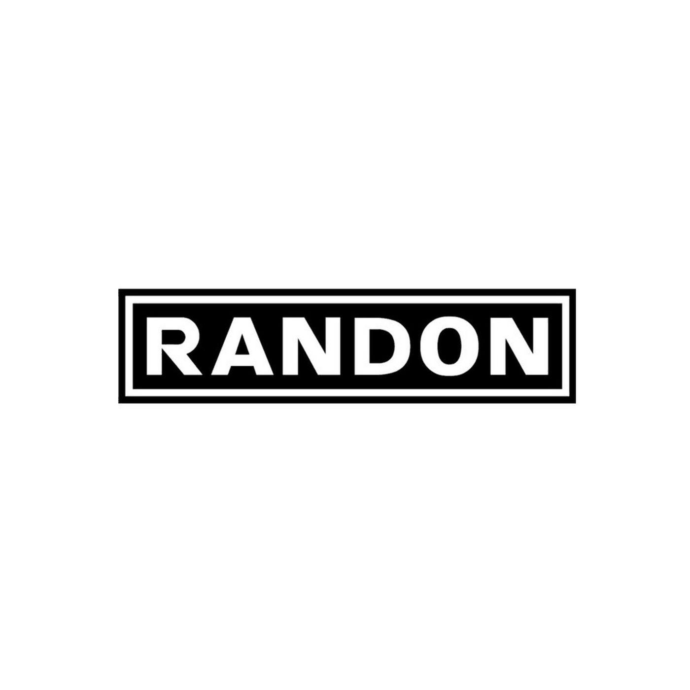 Teleconferência Resultados das Indústrias Randon 4t19