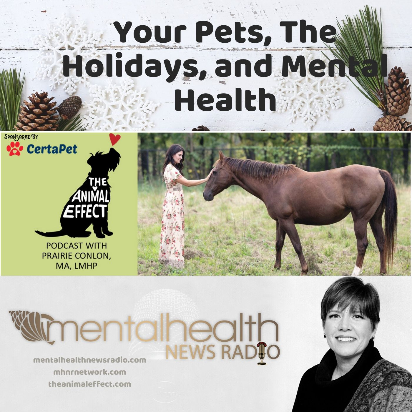 Mental Health News Radio - Your Pets, the Holidays, and Mental Health