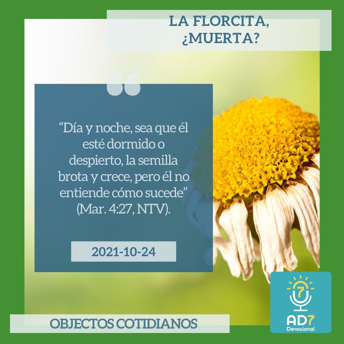 24 de octubre - La florcita, ¿muerta? - Devocional de Jóvenes - Etiquetas Para Reflexionar
