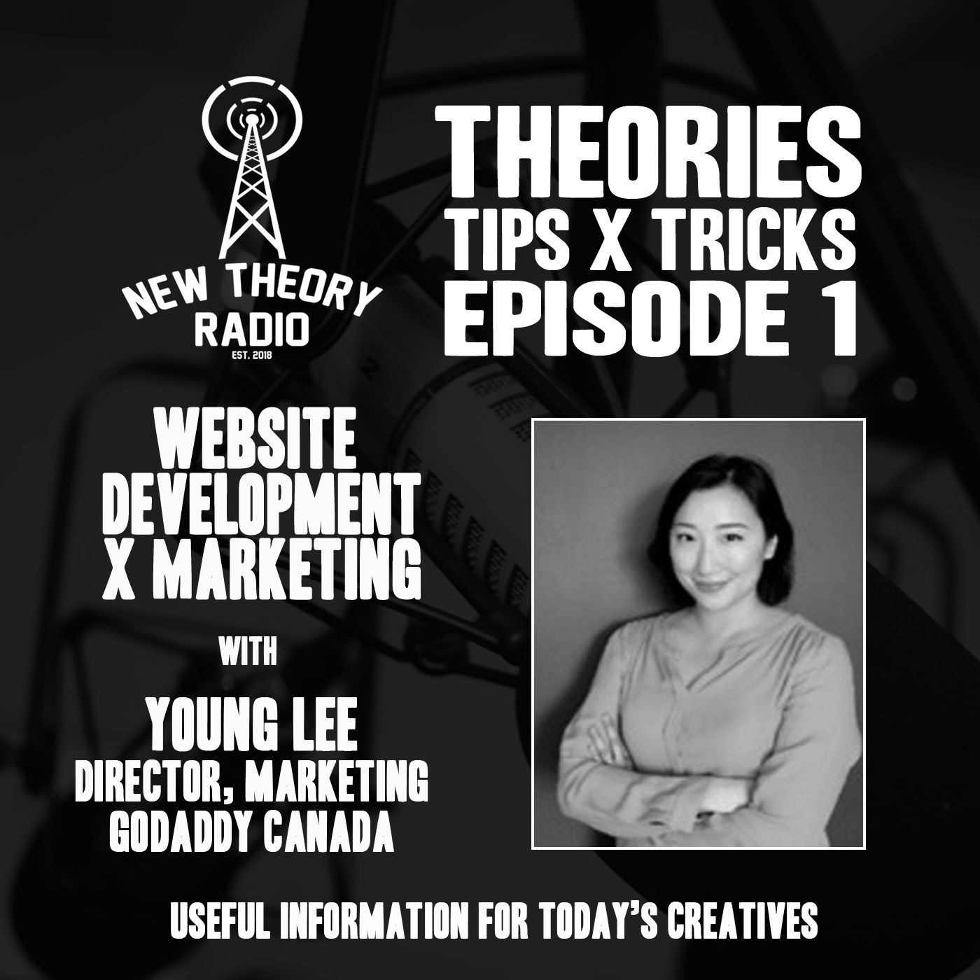 BONUS: Theories, Tips and Tricks - Episode One with GoDaddy's Young Lee
