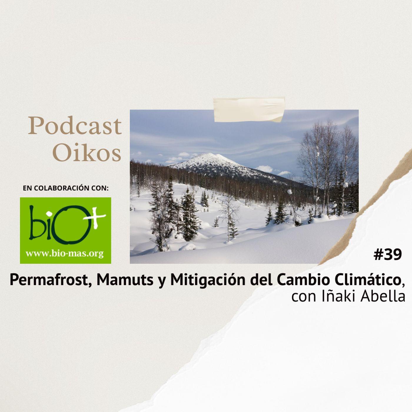 Permafrost, Mamuts y Mitigación del Cambio Climático, con Iñaki Abella | Oikos #39
