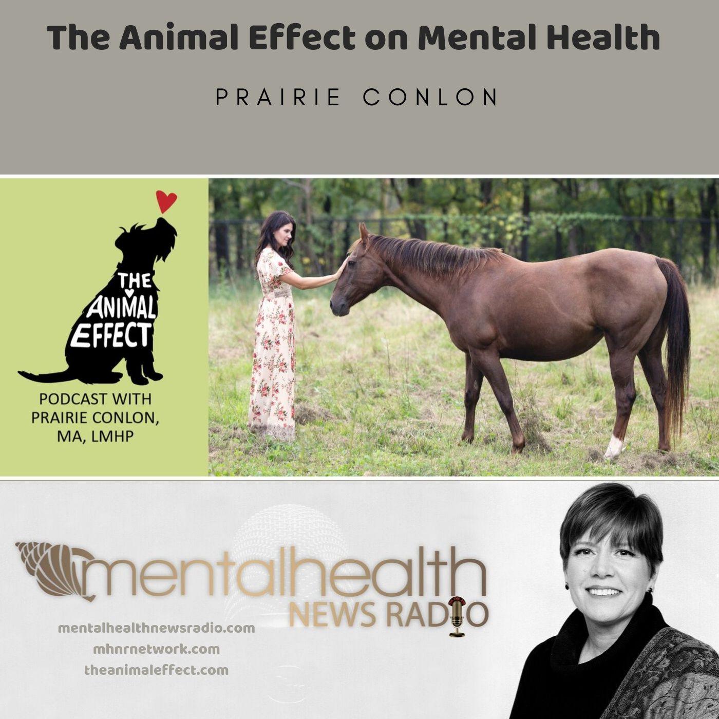 Mental Health News Radio - The Animal Effect on Mental Health with Prairie Conlon