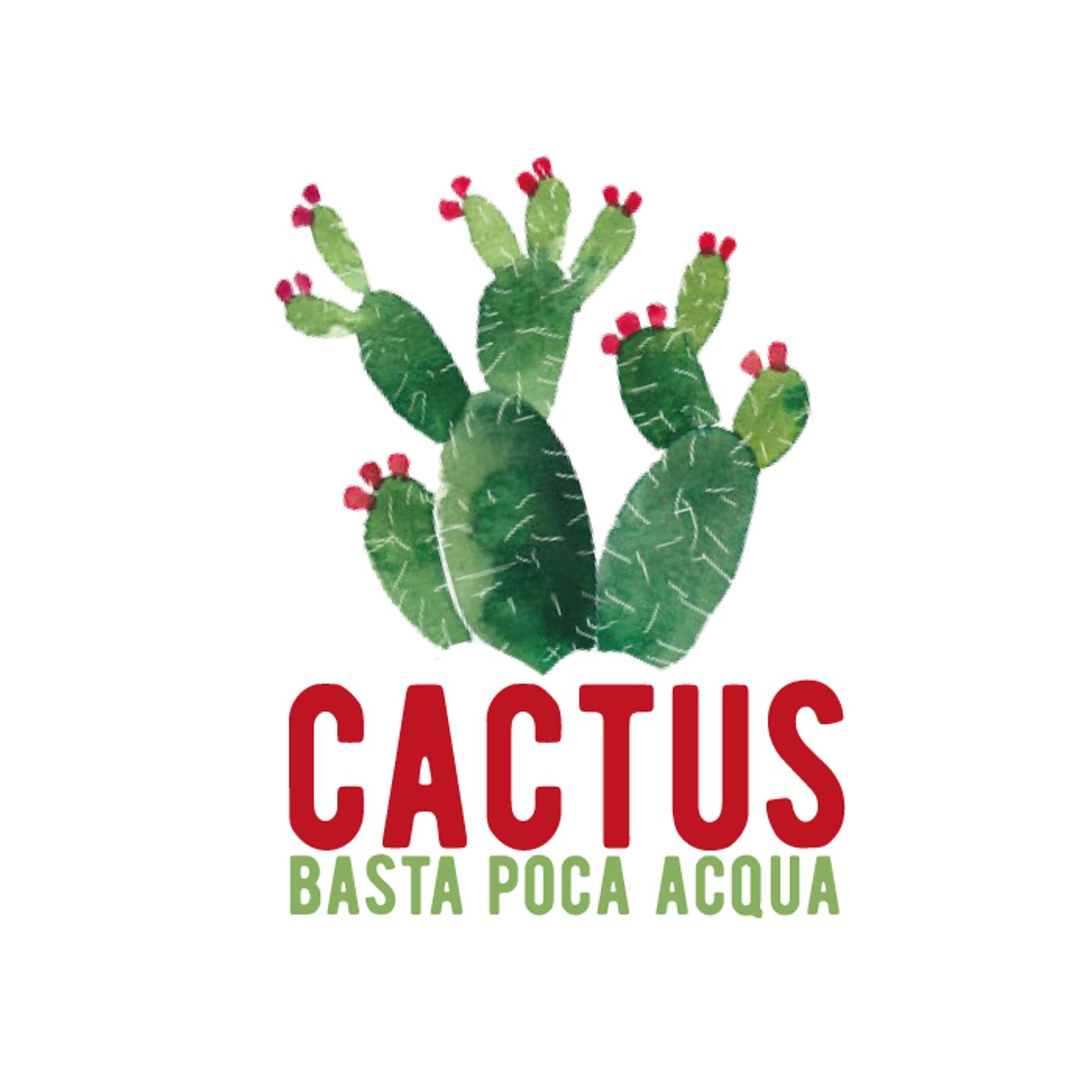 Cactus #35 - Todo Cambia - 27/05/2021
