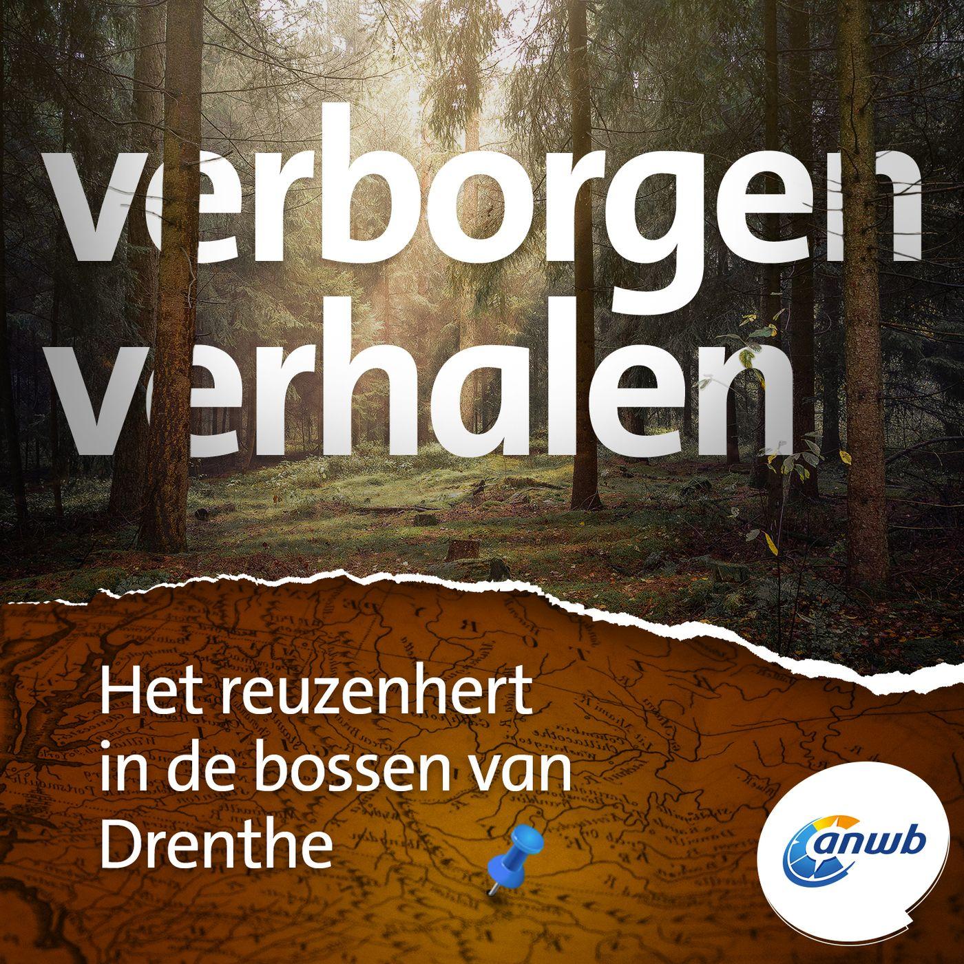 Het reuzenhert in de bossen van Drenthe