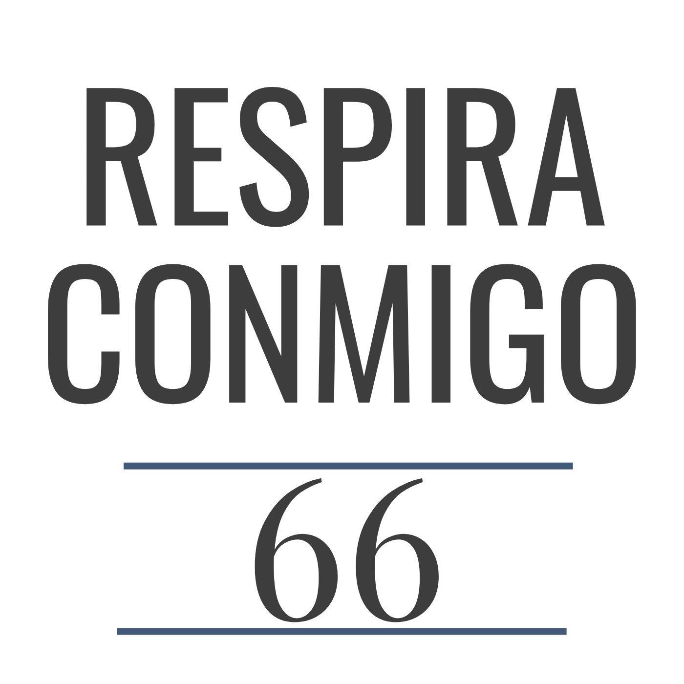 66 - Anatomía del aparato respiratorio