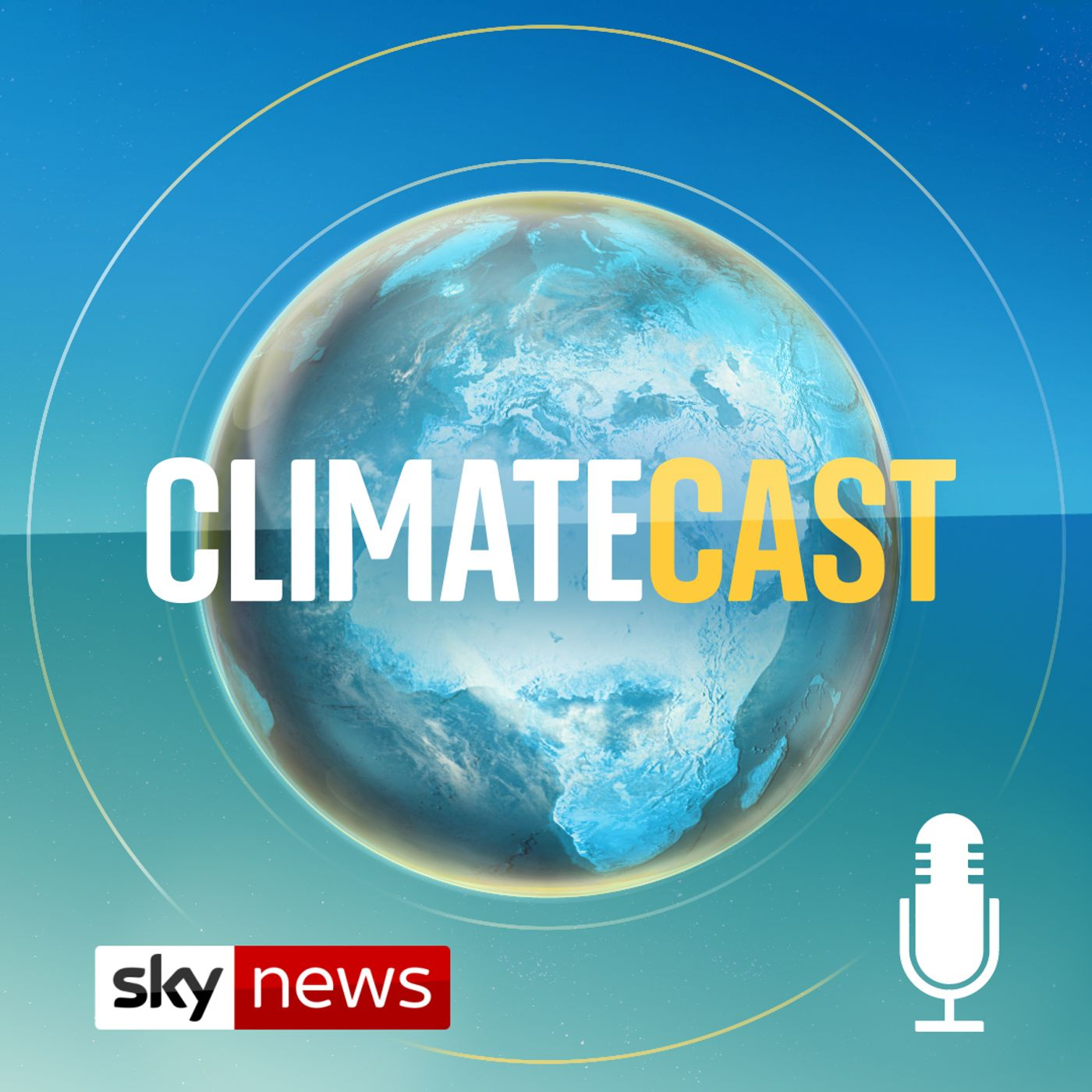 Climate lawfare: Fighting climate change in court