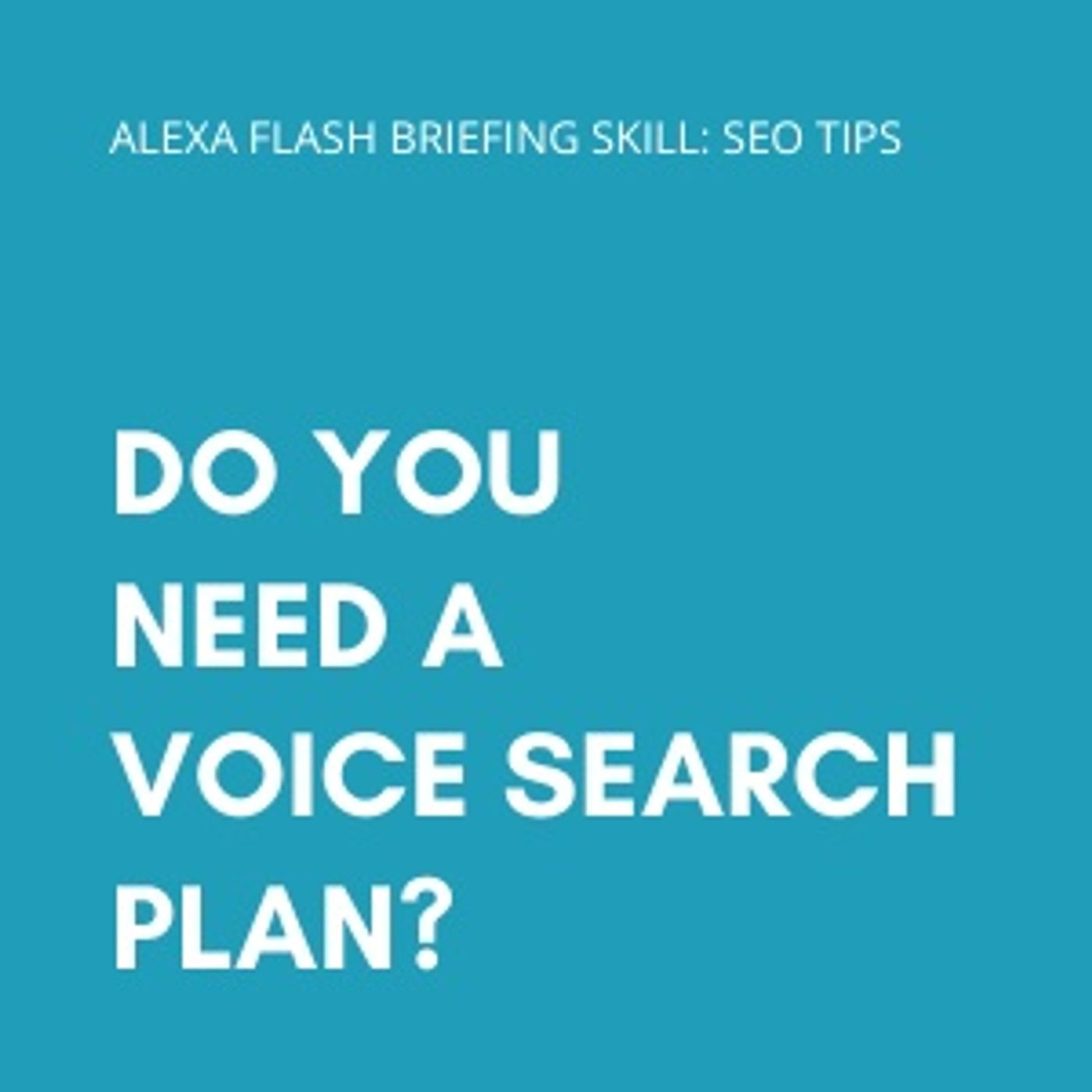 Do you need a voice search plan?