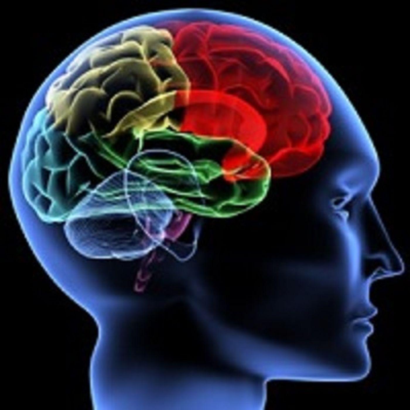 L'Osservatore Romano rompe il tabù sulla morte cerebrale