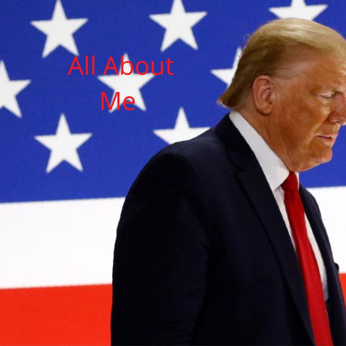 Impeachment of Donald Trump Again