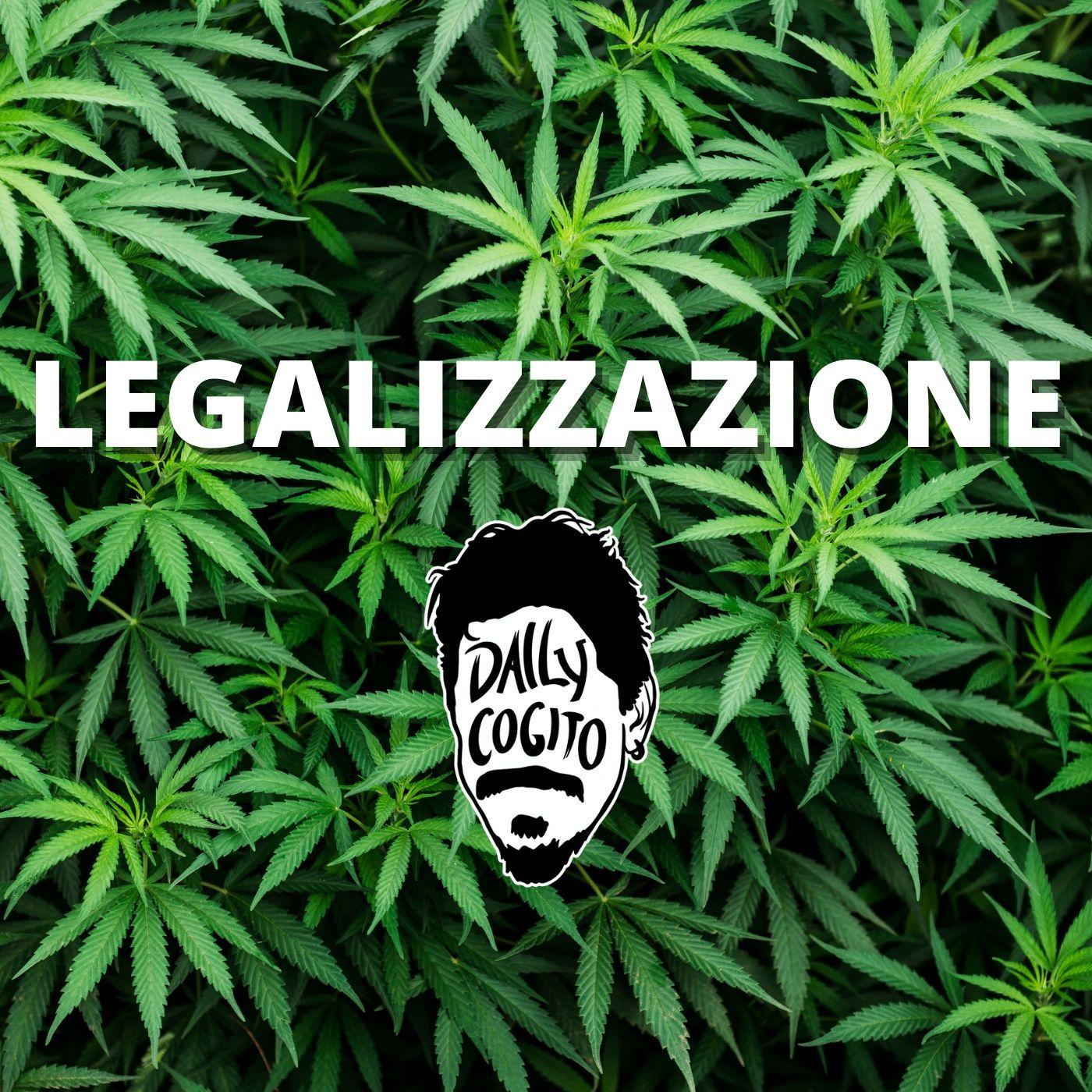 Tutte le Ragioni della Legalizzazione - #referendumcannabis