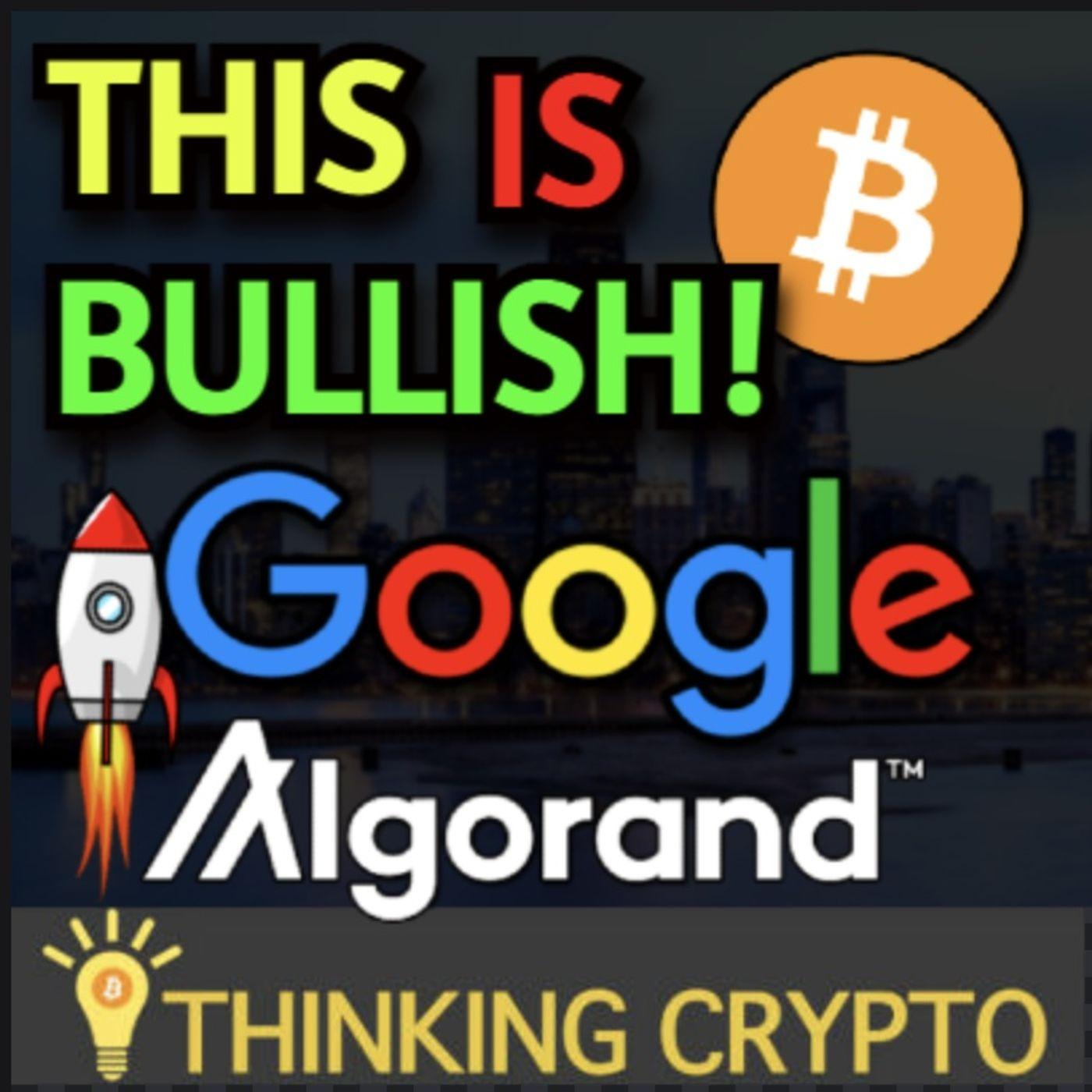 Google Lifts Crypto Ad Ban! - CityCoins & Miami Borderless Capital $25M Fund Algorand Circle USDC