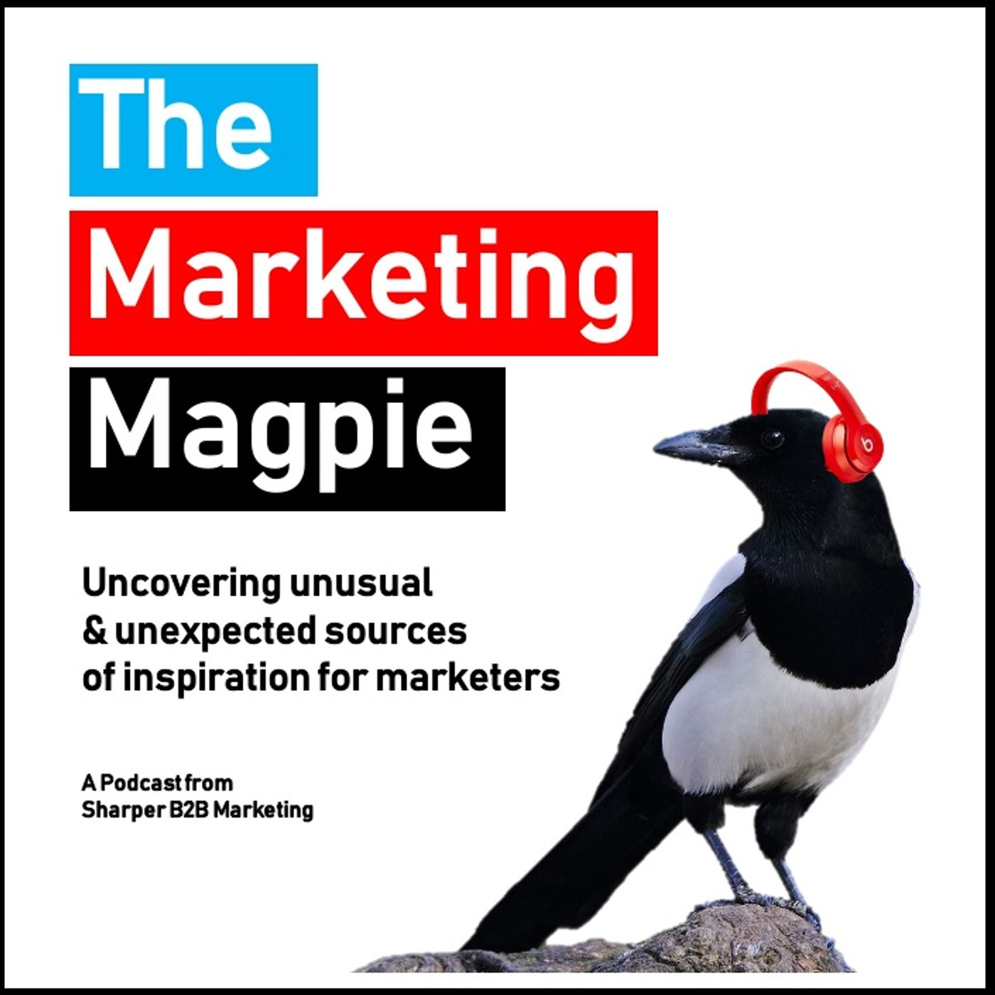 The Marketing Magpie - The Trailer