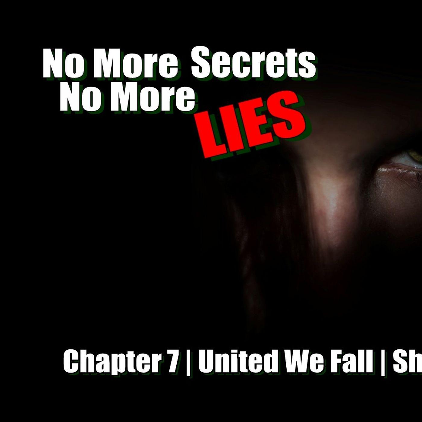 United We Fall - Chapter 7 - No More Secrets No More Lies