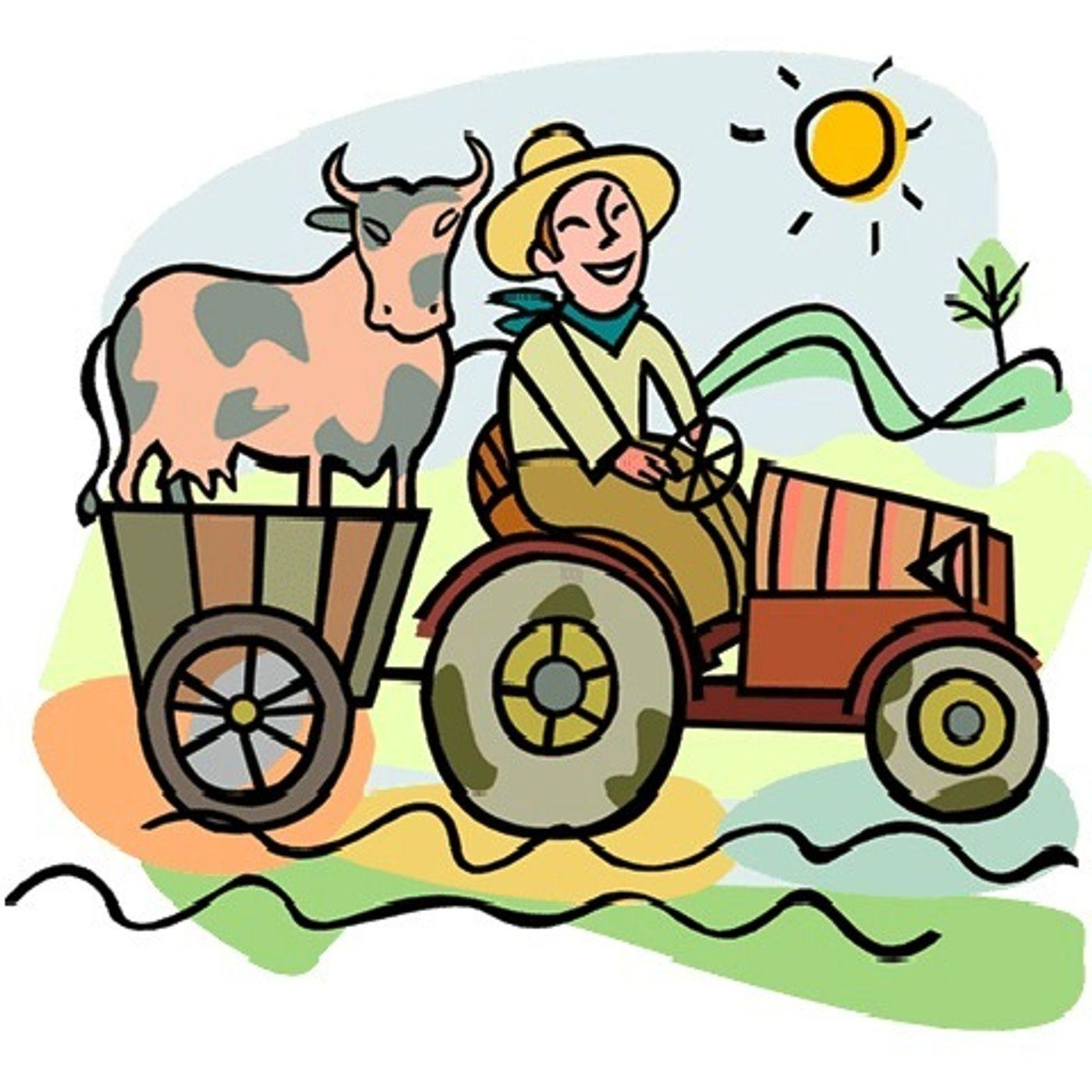 La benedizione dei trattori