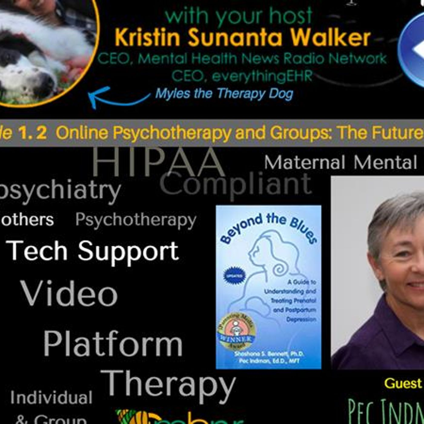 Mental Health News Radio - Online Psychotherapy and Groups: Telemental Health with Dr. Pec Indman 1.2